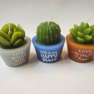 Other - Succulent Cactus Shaped Candles, set of 3